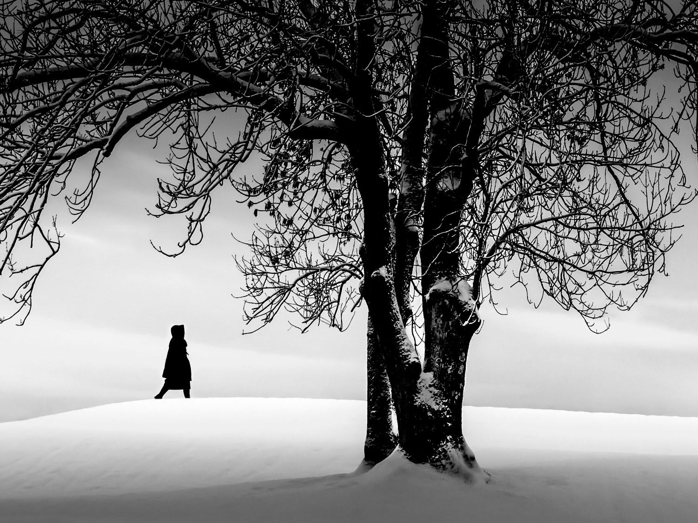 tre-dame-gamlebyen-vinter-snø silhuett